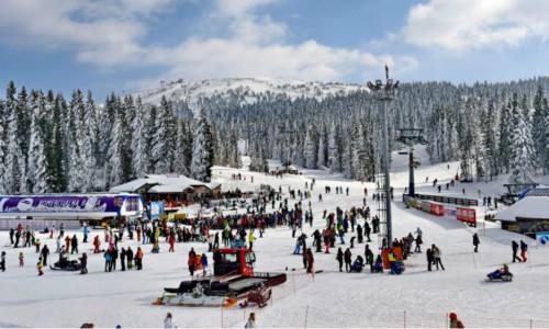 Винный фестиваль: лыжи и вино